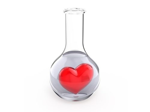 Is Love a Mere Chemical Reaction or is it Something Born Out of Feelings and Emotions?